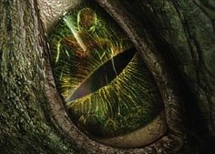 lizards fighting | New Lizard Poster for The Amazing Spider-man , Opens at $50 Million ...