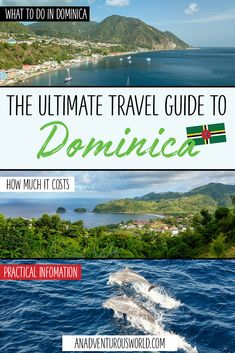 From whale watching to swimming in Emerald Pool to scuba diving Champagne Reef, this is what to do in Dominica, the nature island of the Caribbean! Caribbean Vacations, Caribbean Cruise, Royal Caribbean, Puerto Rico, Uganda, Les Bahamas, Maui Vacation, Italy Vacation, Vacation Ideas