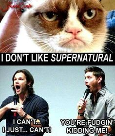 Supernatural Memes he said fudge. like the goddess santa lady said in that episode season three!