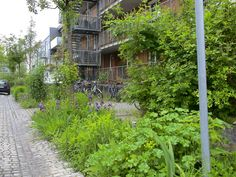 Ecoquartier-Alsace-Colmar-Freiburg-Vauban