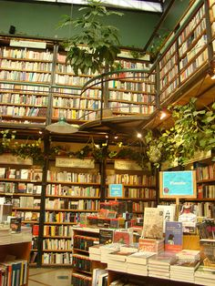 I just want to work here and read and drink tea and make friends and be happy, simple
