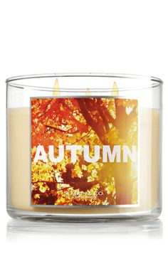 My house smells so good when I burn this candle: Autumn - Slatkin & Co. - Bath & Body Works