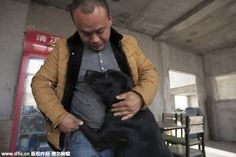 Former Millionaire Spent His Entire Fortune Rescuing Dogs From Being Slaughtered