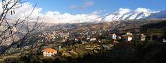 Image from http://upload.wikimedia.org/wikipedia/commons/f/ff/Cedars_Mountain,_Lebanon_-_Photgraphy_by_Wissam_Shekhani_-_November_2011.JPG.