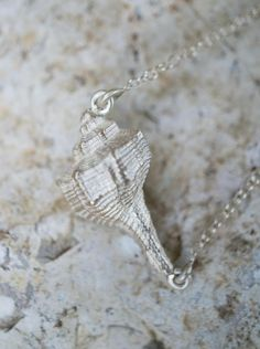 Sea shell pendant on ball chain necklace