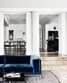 into blue sofas lately✨🐟