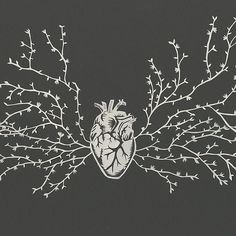 Image result for x ray paper cut art