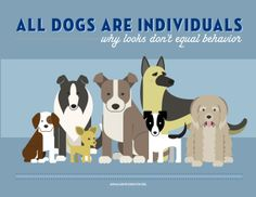 """LOVE this infographic!!   """"All dogs are individuals means: We owe it to all dogs to see them for who they really are, free of prejudice, stereotypes, and assumptions that are based on a known pedigree, a breed label guess, physical appearance, or their past history."""""""
