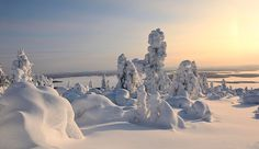 I've spend one week walking in snow of Lapland. It was like a dream.