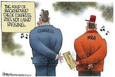 Background checks Congress doesn't mind