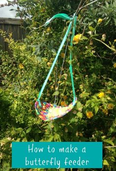 How to make a butterfly feeder, a simple thrifty nature craft and activity that kids will absolutely love