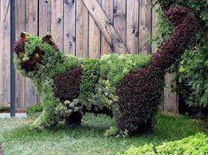 Creative Garden Design Pictures