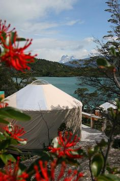 Patagonia Camp in Torres Del Paine Glam Camping, Luxury Camping, Camping Hacks, Luxury Travel, Glamping, Luxury Hotels, Torres Del Paine National Park, In Patagonia, Closer To Nature