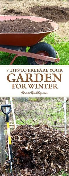 Taking the effort to clean up the vegetable garden beds in fall makes it very easy to begin growing the following spring. Here are 7 tips to do before the snow flies.