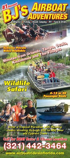 19 Best Airboat Rides In Florida Images Airboat Rides