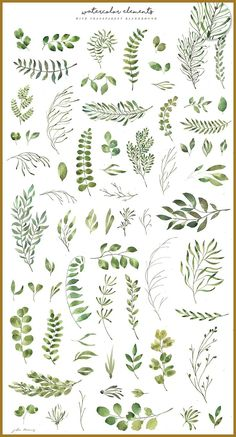 Leafy Leaf Collection by Julia Dreams on Creative Market flowers, florals and t. Watercolor Leaves, Floral Watercolor, Watercolor Paintings, Watercolor Pattern, Green Paintings, Watercolor Logo, Watercolor Artists, Watercolor Design, Watercolor Wedding