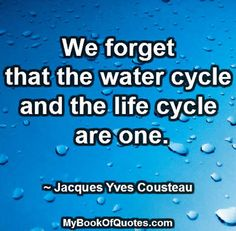 We forget that the water cycle and the life cycle are one. Jacques Yves Cousteau, Water Cycle, Rain Garden, Life Cycles, Wisdom Quotes, Forget, Gardens, Sayings, Lyrics