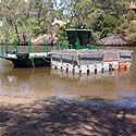 JETTY CONSTRUCTIONS and MURRAY RIVER BARGE SERVICE have been serving Western Australia for over 20 years.Please visit us http:www://jettyconstructions.com.au/