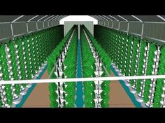 ▶ Urban Farms - 70 ft Aquaponics Hoop House - YouTube