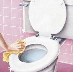 Die Toilette sollte regelmäßig geputzt werden - von innen, außen, oben und unten