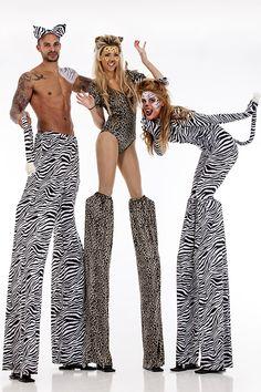 Leopard & Zebra stilt walkers. Big Foot Events.