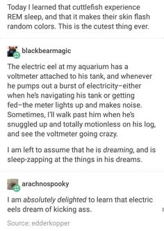 I'm an electric eel. Funny Cute, The Funny, Hilarious, Dc Memes, Funny Memes, Electric Eel, Haha, Comedy, Cutest Thing Ever