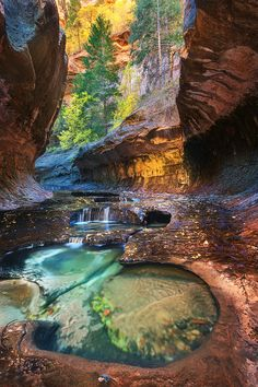 Emerald Pools tucked away in the deep back country of Zion National Park, Utah.