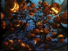 Halloween Tree  Hang REAL Pumpkins Anywhere! Floating Pumpkin Hangers www.facebook.com/FloatingPumpkin