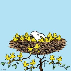 Snoopy, Woodstock and Friends Sleeping in a Giant Bird's Nest