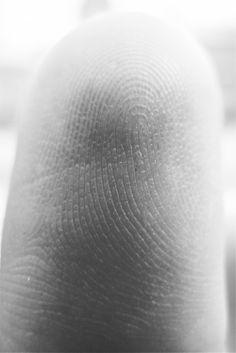 thobias:   Mikroskopiaav Thobias Malmberg