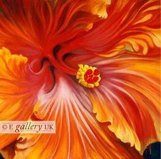 Flamenco 2 by Anita Nowinska