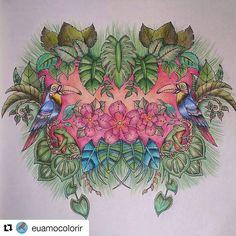 Lindo colorido!! 😍😍#Repost @euamocolorir with @repostapp ・・・ O primeiro do Selva Mágica foi simples mas eu gostei muito.  Bom dia #familiacolorideira #coloringbook #johannabasford #coloringbookforadults #MagicalJungle #magicaljungle #colorindooinstagram #colorindo #instagood #follow #followme #happy