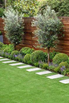 Small Backyard Gardens, Backyard Fences, Outdoor Landscaping, Modern Landscaping, Back Gardens, Small Gardens, Outdoor Gardens, Small Garden Trees, Back Garden Design