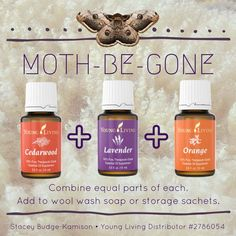I have a hand made yarn business. For me, moth is a 4 letter word. Essential Oils Guide, Young Living Essential Oils, Essential Oil Blends, Doterra, Getting Rid Of Moths, Easential Oils, Moth Repellent, Natural Cleaning Products, Essential Oil Diffuser