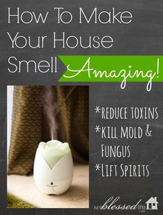How To Make Your House Smell Amazing   MyBlessedLife.net