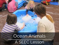 Come with us to explore what's in our deep blue oceans with a lesson from seecstories.com Learning Resources, Caregiver, Oceans, Deep Blue, Infant, Activities, Explore, Education, Animals