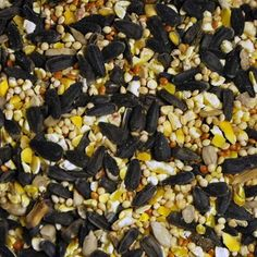 Windy City Parrot helps you find the right nutrition for your specific species. It's a complex matrix of seeds pellets and supplements. Wild Bird Food, Wild Birds, Black Sunflower Seeds, Pet Birds, Parrot, Best Friends, Pets, Bag, Parrot Bird