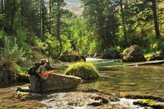 On Top: 12 Tips for Catching More, Bigger and More Difficult Fish on Dry Flies