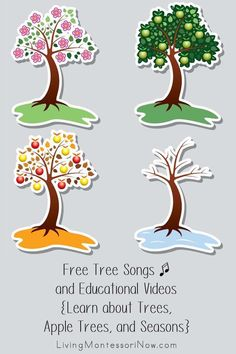 Free tree songs, rhymes, and educational videos for a variety of ages; perfect for homeschool or classroom for a tree theme, apple tree theme, or seasons theme - Living Montessori Now Seasons Kindergarten, Kindergarten Songs, Preschool Songs, Preschool Themes, Preschool Learning, Circle Time Activities, Seasons Activities, Science Activities For Kids, Montessori Activities