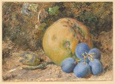 William Henry Hunt (British, 1790–1864). An Apple, Grapes and a Hazelnut on a Mossy Bank, 1810–64. The Metropolitan Museum of Art, New York. Purchase, Brooke Russell Astor Bequest, 2013 (2013.78).