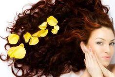 Lima Ramuan Alami Memperbaiki Pertumbuhan Rambut | http://updatesehat.blogspot.com/2014/12/lima-ramuan-alami-mempercepat-tumbuh-rambut.html