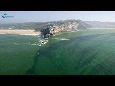 Canhão da Nazaré - Praia do Norte | Português