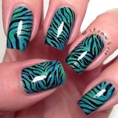 strawbrie #zebra #mani #turq #blue #green #seagreen
