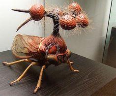 brazilian-treehopper-model