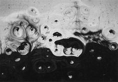 写真 · Lomography