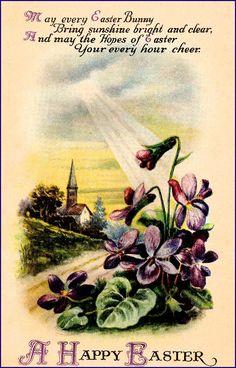 #Easter #antique #postcard #violets