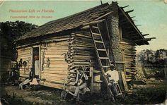 Vintage Postcard 1915 Plantation Life in Florida Old House Banjo Ladder People | eBay