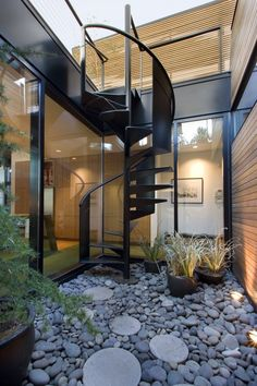 interior courtyard (a bit small though) with black steel spiral staircase to the roof