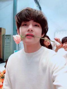We purple the most beautiful flower - Taehyung 💜💜🌹🌹 Bts Taehyung, Bts Bangtan Boy, Bts Jungkook, Taehyung Smile, Daegu, Foto Bts, Bts Photo, K Pop, Bts Kim