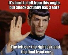 To boldly pun where no man has punned before